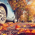 a car driving on fallen leaves