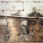 mold on brick walls